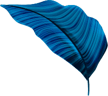 leaf-vector-layer2
